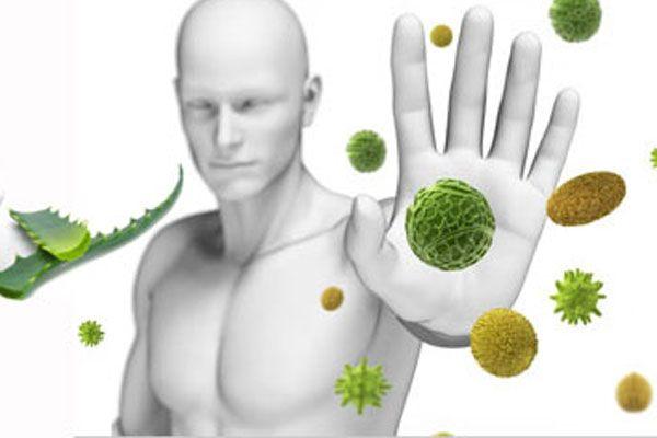 Что мы знаем об иммунитете?