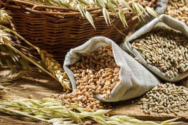 Клетчатка в продуктах: влияет ли данный компонент на здоровье?