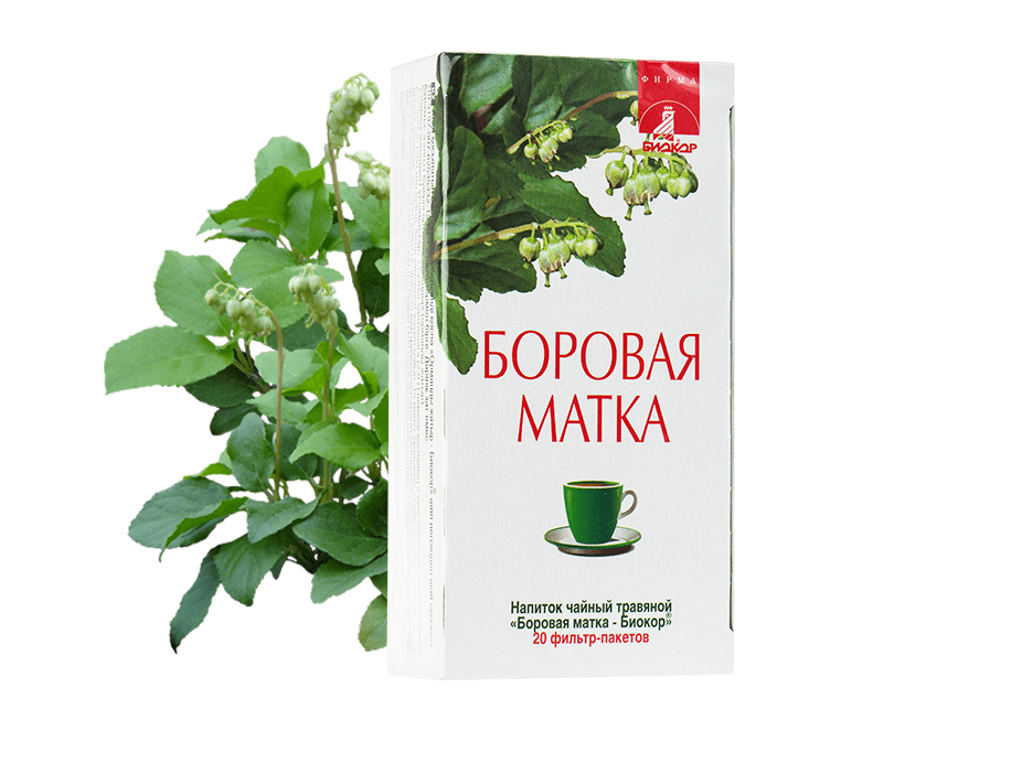 "Фото 2 - Herbal tea drink Ortilia Secunda ""Biokor"", №20."