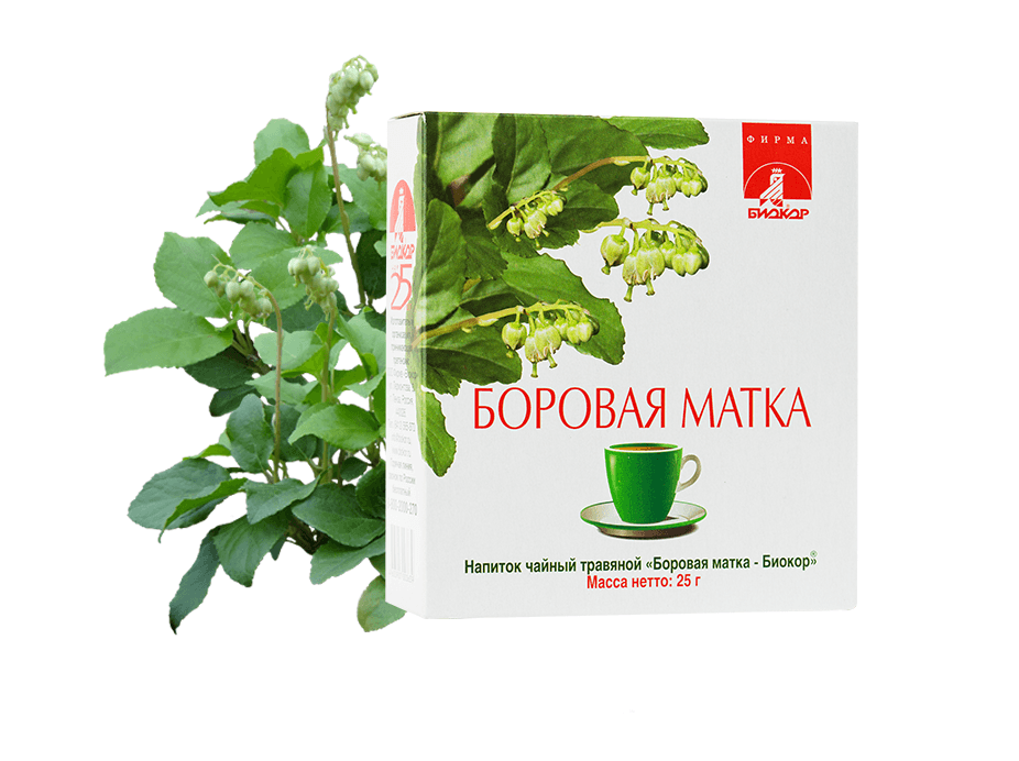 Фото 16 - Напиток чайный травяной «Боровая матка - «Биокор», 25 г.
