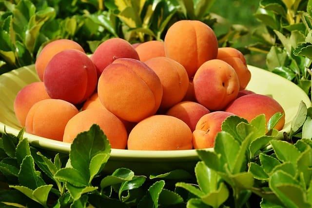 Все что вам нужно знать о персиках
