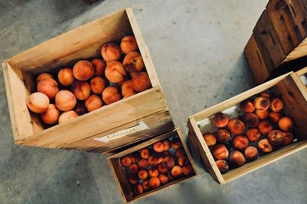 Все, что вам нужно знать о персиках