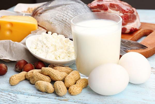Чем вредна белковая диета для организма?