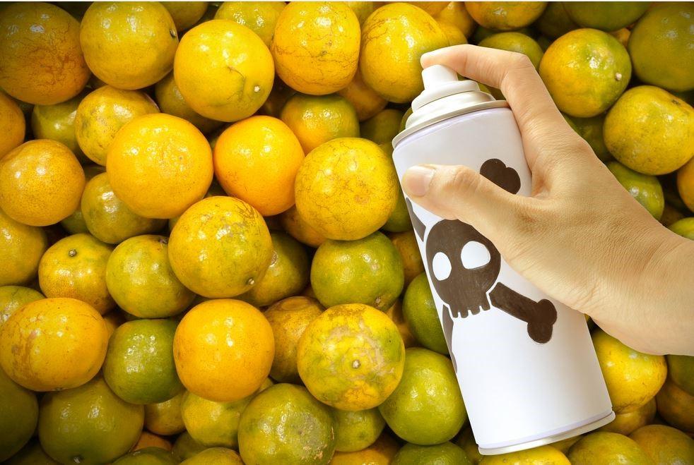 Мифы о фруктах: 8 устойчивых заблуждений